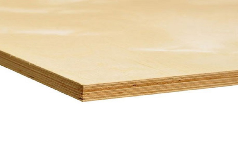 All You Need to Know About Birch Plywood